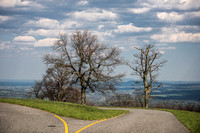 Avoid Pollen Travel blog Blue Ridge Parkway April 4 2016  61092