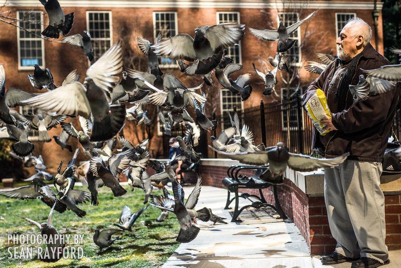 Avoid Pollen Travel blog Hartford, to Newport 2016  58034