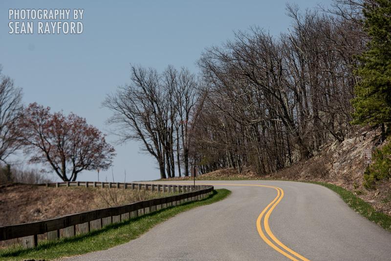 Avoid Pollen Travel blog Blue Ridge Parkway April 4 2016  60955
