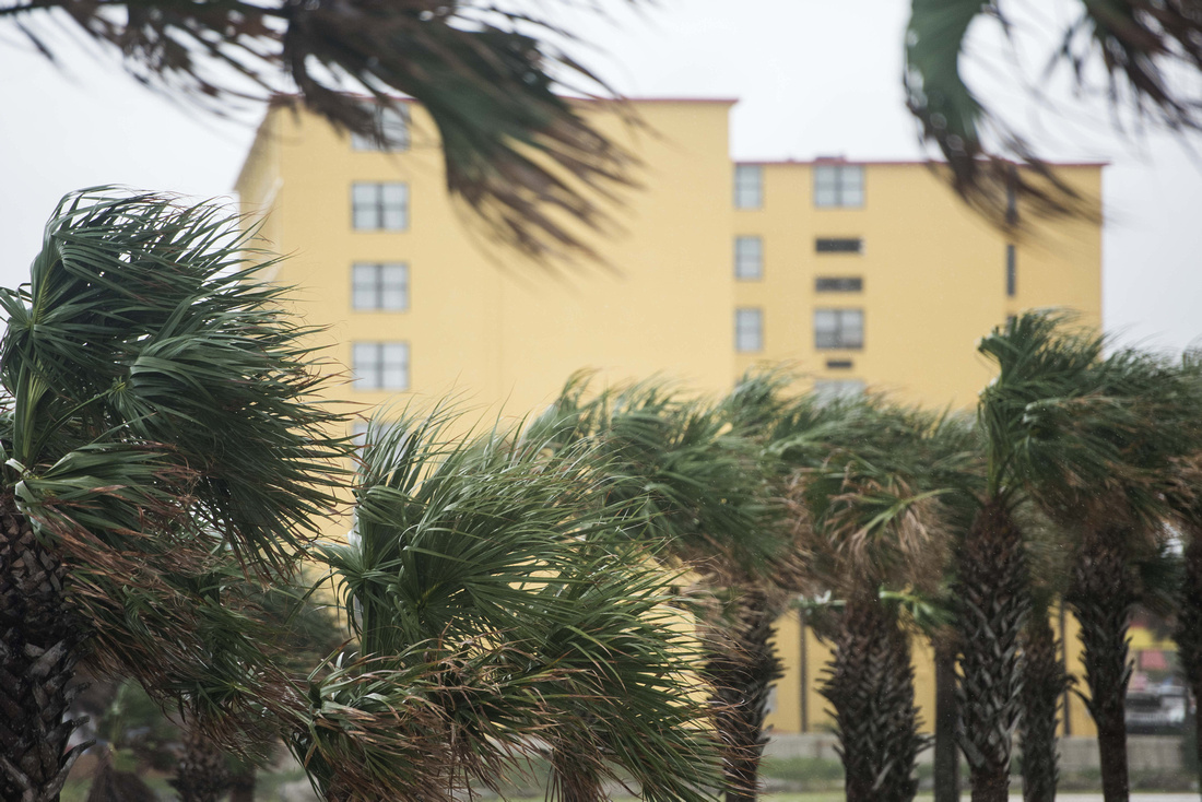 hurricane Irma daytona photos 129639